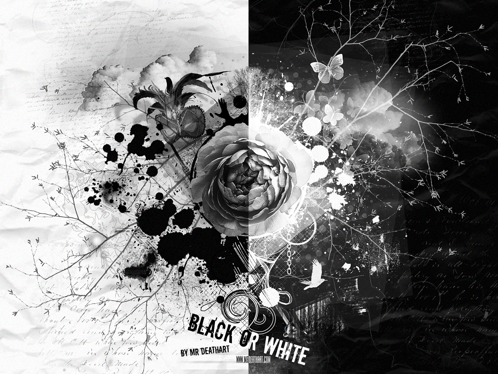 Black and white rose android wallpaper black and white rose android wallpaper