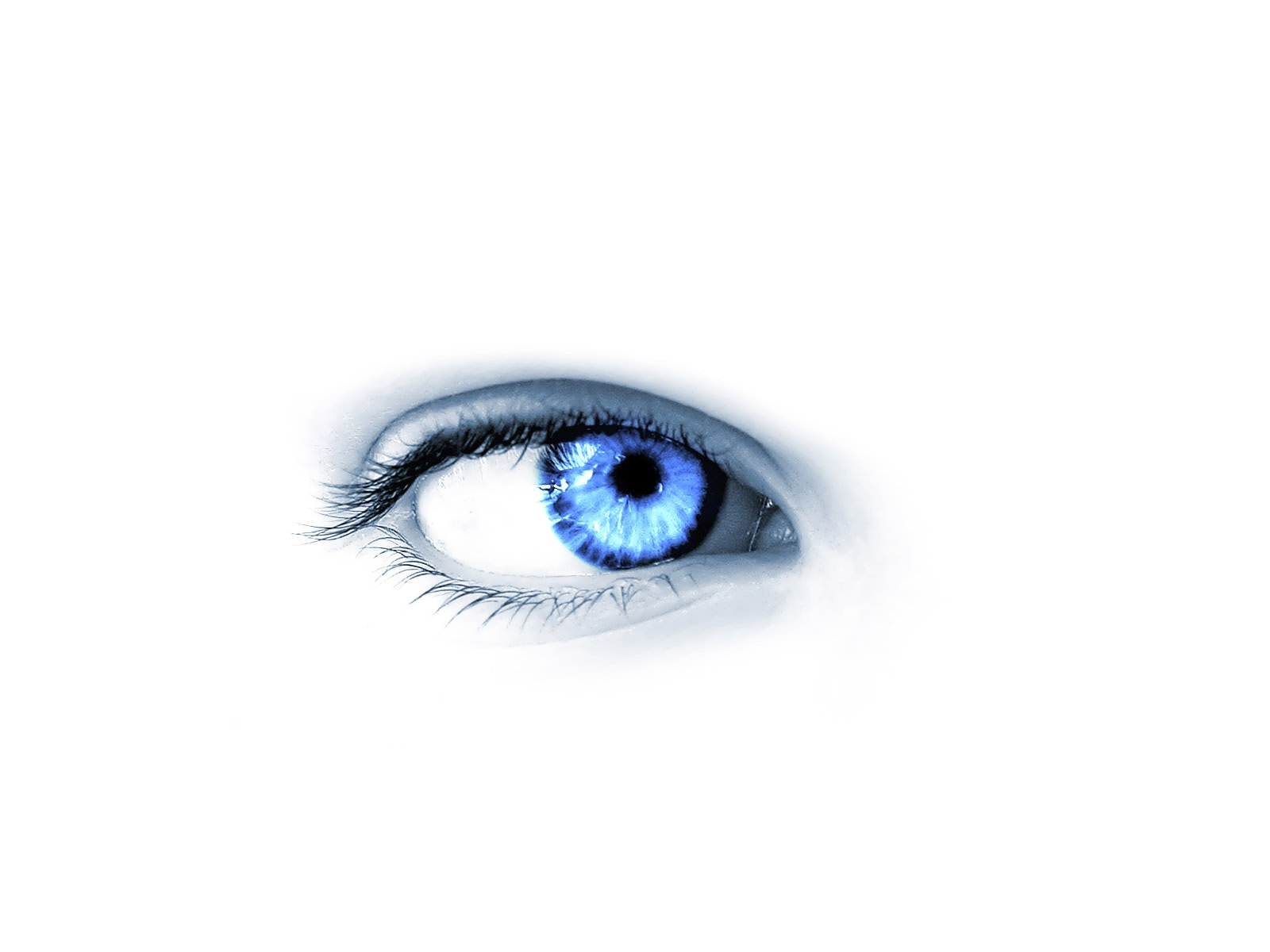 white blue eye android wallpaper white blue eye android wallpaper